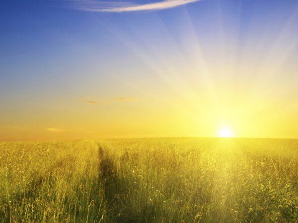 Three Decisions Toward a Brighter Future